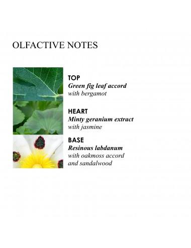 Molton Brown Geranium Nefertum Bath Gel